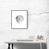 barbouri-framed