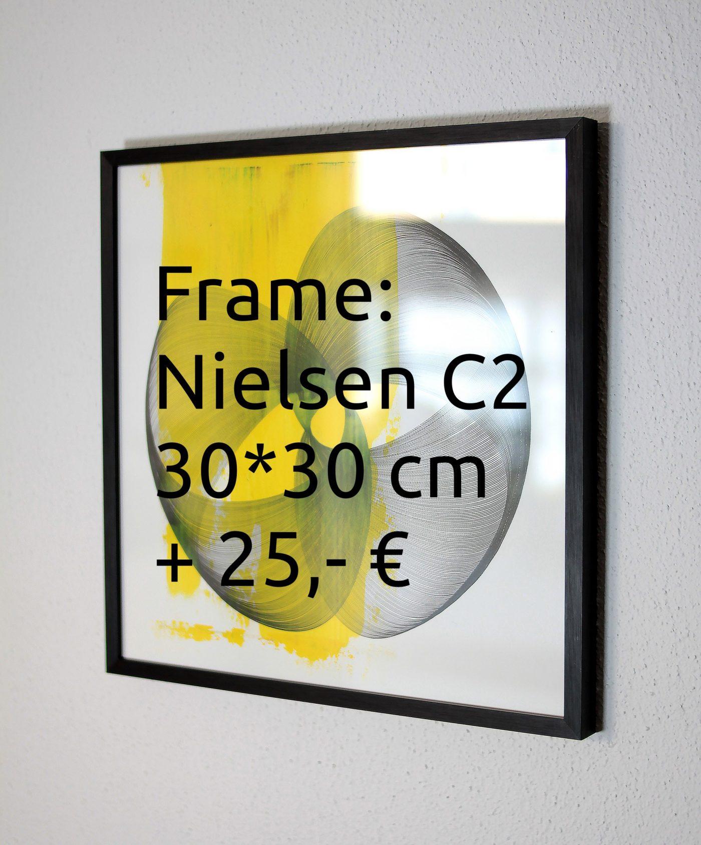 Frame: Nielsen C2