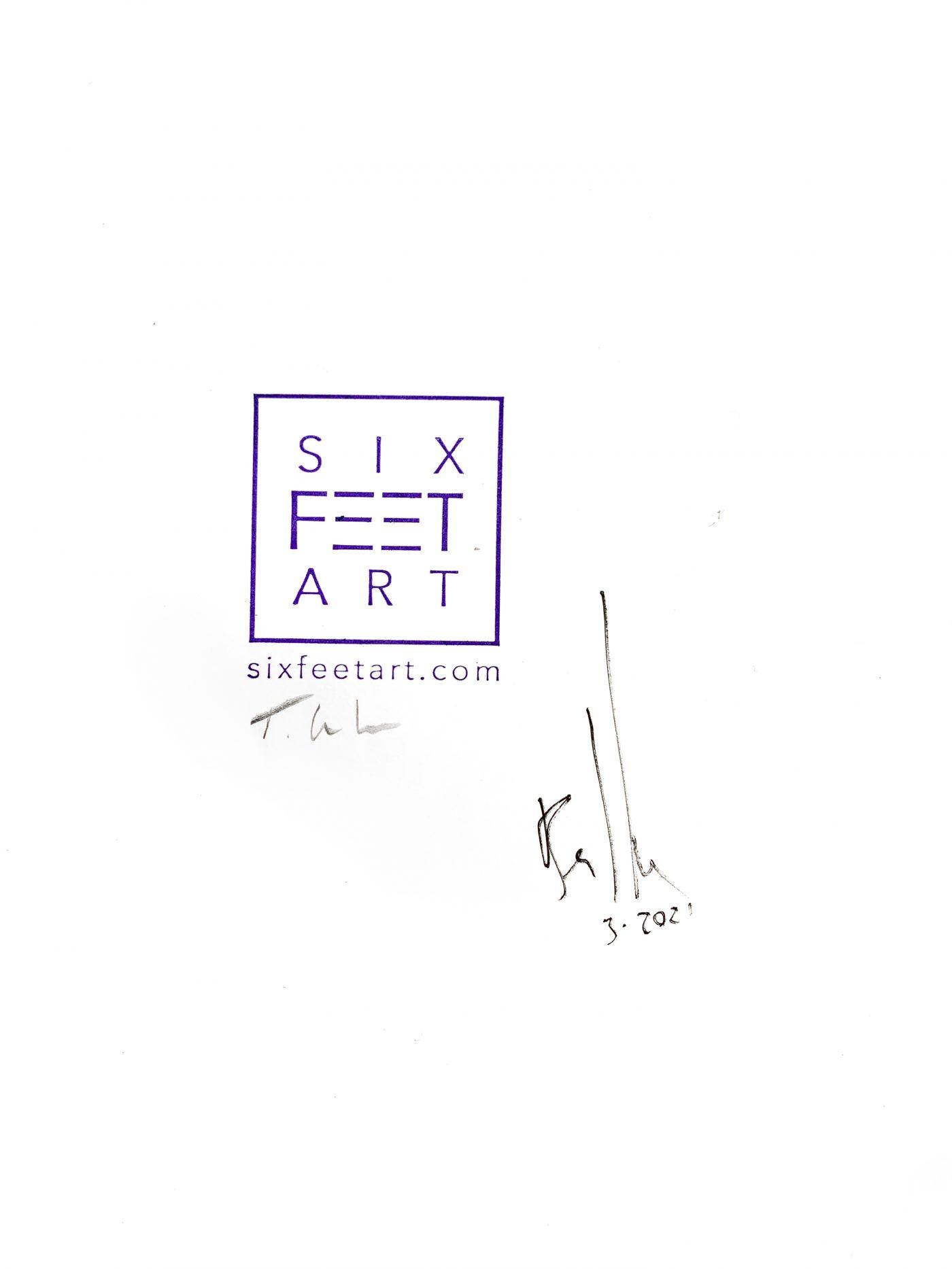x454 - 29 Mar 2021 - Schachbrett Falter