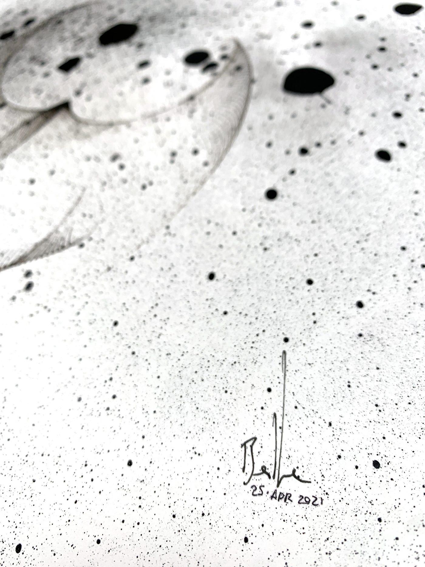 x481 - 25 Apr 2021